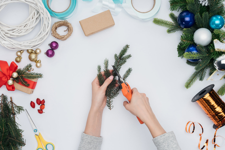 Partial view of woman cutting pine tree branch for Christmas decoration isolated on white background