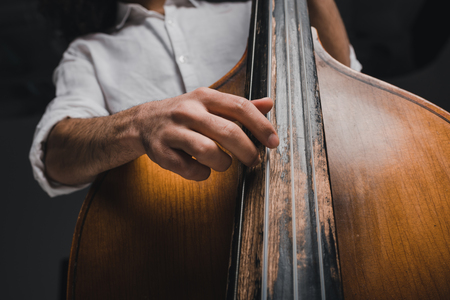 cropped shot of musician playing standup bass