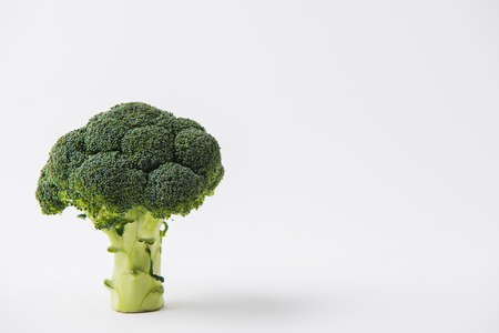 green raw brocolli laying on white background