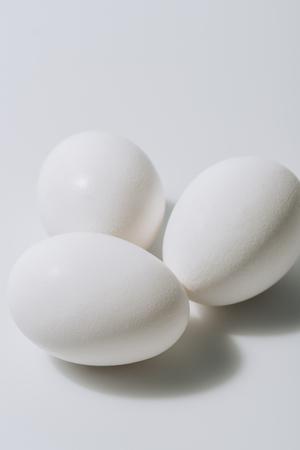 white eggs laying on white background