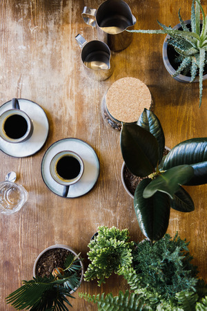 Two cups of black coffee on table with plants in coffee shop