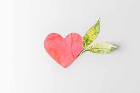 top view of red paper heart and green leaves isolated on grey, environment protection concept