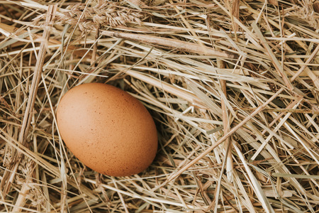 unprocessed brown egg laying on straw Banco de Imagens - 111594465
