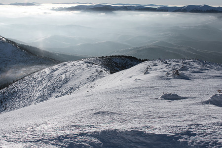 scenic view of mountains and forest covered with snow and cloudy sky, Carpathian Mountains, Ukraine Imagens