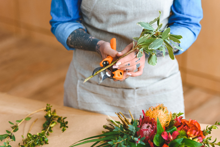 mid section of young florist in apron cutting plants at workplace