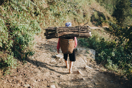 SA PA, VIETNAM - 03 JANUARY, 2018: back view of person carrying wood in basket on back, Sa Pa, Vietnam