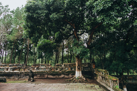 ruins of ancient architecture and green trees in Hue, Vietnam