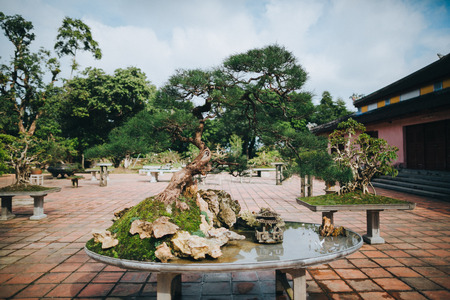 bonsai tree and decorative pond in Hue, Vietnam Stock Photo