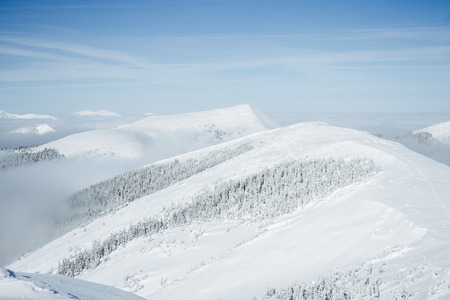 Gorgany mountains snowy forest landscape Фото со стока