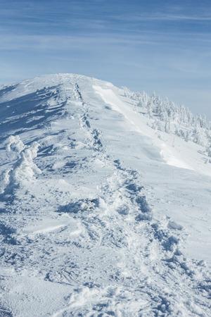 Tranquil winter Carpathian mountains landscape