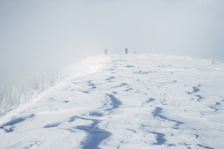 Team of climbers on top of Gorgany mountains during blizzard