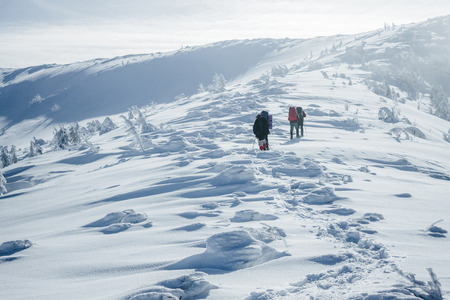 Footprints in snow behind climbers in Gorgany mountains