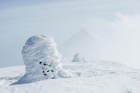 Freezing snowy winter landscape of Carpathian mountains