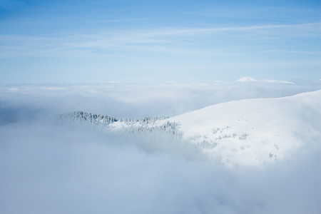 Gorgany mountains snowy forest landscape Imagens
