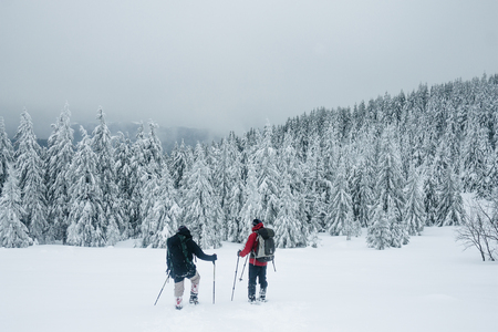 Climbers walking in snowy forest of Carpathians