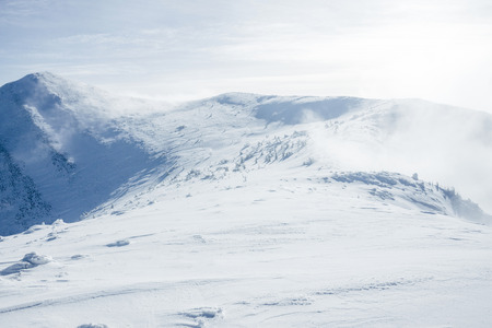 High Gorgany mountains during winter blizzard 스톡 콘텐츠