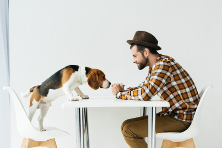 side view of dog sniffing food in man hand Stock Photo