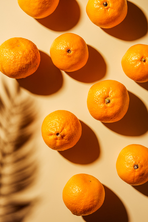 Top view of tangerines and twig shadow on beige backdrop