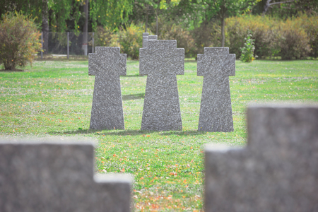 old gravestones placed in row on grass at graveyard Stockfoto