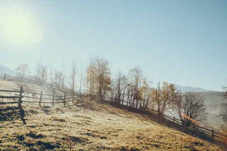wooden pasture fence in Vorokhta on sunny day, Carpathians, Ukraine Фото со стока - 111779504