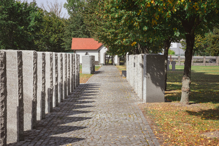 cemetery with memorial gravestones placed in rows under tree