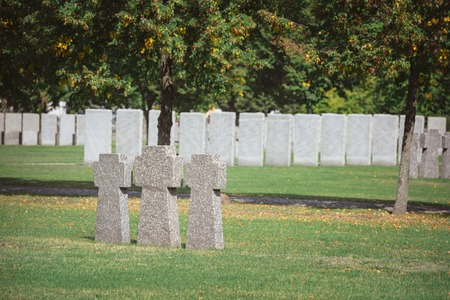 identical memorial stone crosses placed in row at cemetery Stockfoto