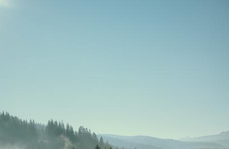 Hazy green mountain forest under blue sky, Carpathians, Ukraine