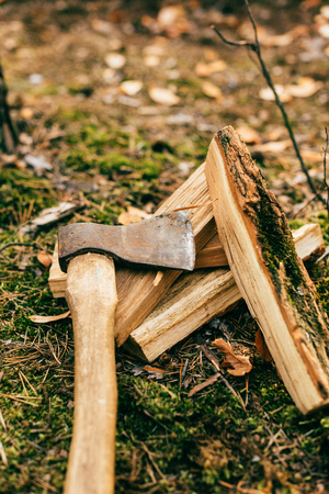 vertical view of pile of chopped firewood on ground with ax in autumn forest