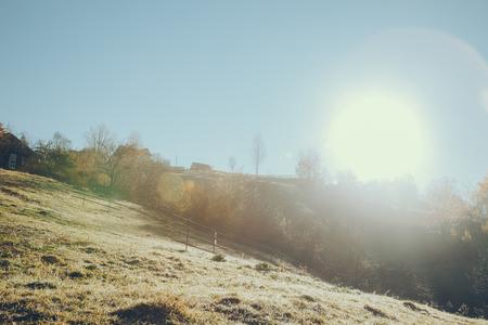 beautiful mountain pasture in Vorokhta on sunny day, Carpathians, Ukraine Фото со стока