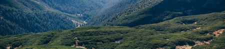 panoramic view of beautiful green mountains landscape, Carpathians, Ukraine Imagens