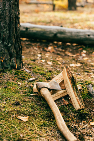 pile of chopped firewood on ground with ax in autumn forest 写真素材