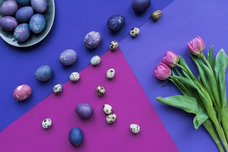 flat lay with painted chicken and quail eggs and tulips on background in purple tones 스톡 콘텐츠