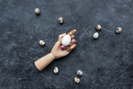 Quail eggs around mannequin hand with chicken egg on dark background 스톡 콘텐츠