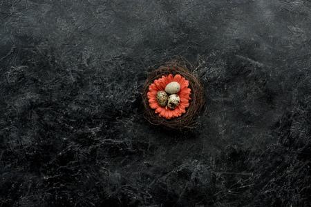 Organic quail eggs in nest with flower on dark background Banco de Imagens - 111818983