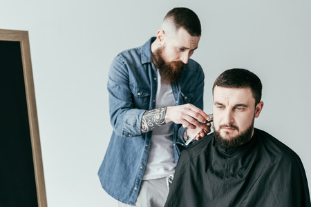 barber trimming client beard at barbershop isolated on white