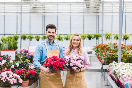 Young male and female gardeners holding pots with azalea flowers Stockfoto