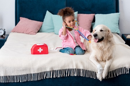 Cute African american child playing doctor with her golden retriever