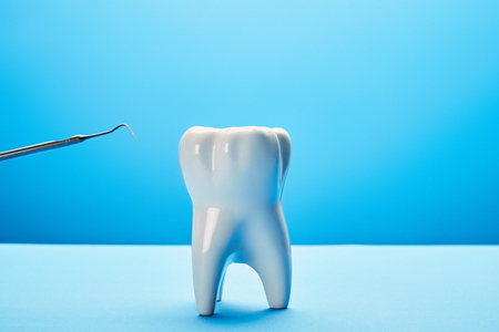 close up view of tooth model and dental probe on blue background