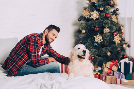 handsome young man petting golden retriever near christmas tree at home