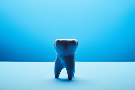 close up view of white tooth model on blue backdrop