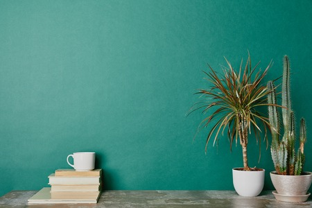 Plants in flowerpots and cup of coffee on books on green background