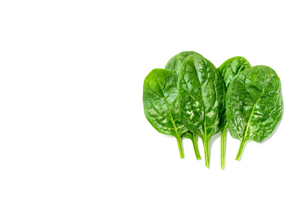 Top view of wet fresh spinach leaves isolated on white