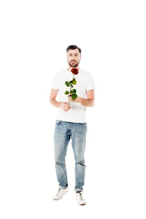 Handsome young adult man holding red rose isolated on white Standard-Bild