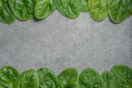 Frame of green and wet spinach leaves on grey background Stock Photo