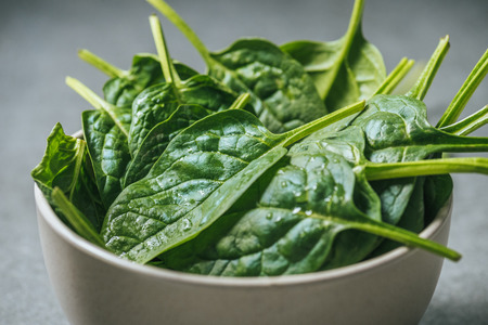Organic fresh and wet spinach leaves in white bowl