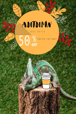 chameleon sitting on stump with coffee to go on green grass with autumn sale Stock fotó