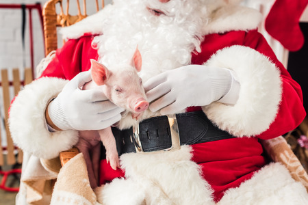cropped shot of santa holding pig and sitting in rocking chair