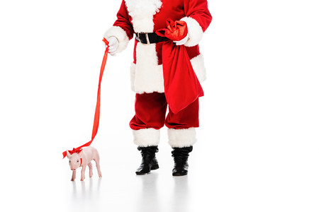 cropped shot of santa claus with sack and leashed piggy isolated on white Stock Photo