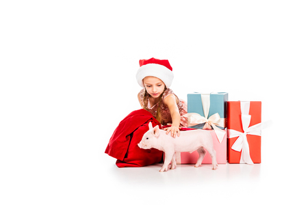 cute happy child in santa hat stroking pig and sitting near christmas presents isolated on white