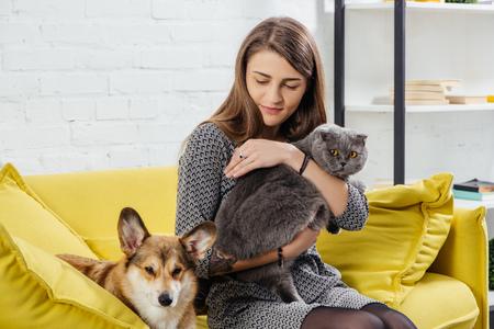 Bella mujer sentada en un sofá con pembroke welsh corgi y adorable gato scottish fold